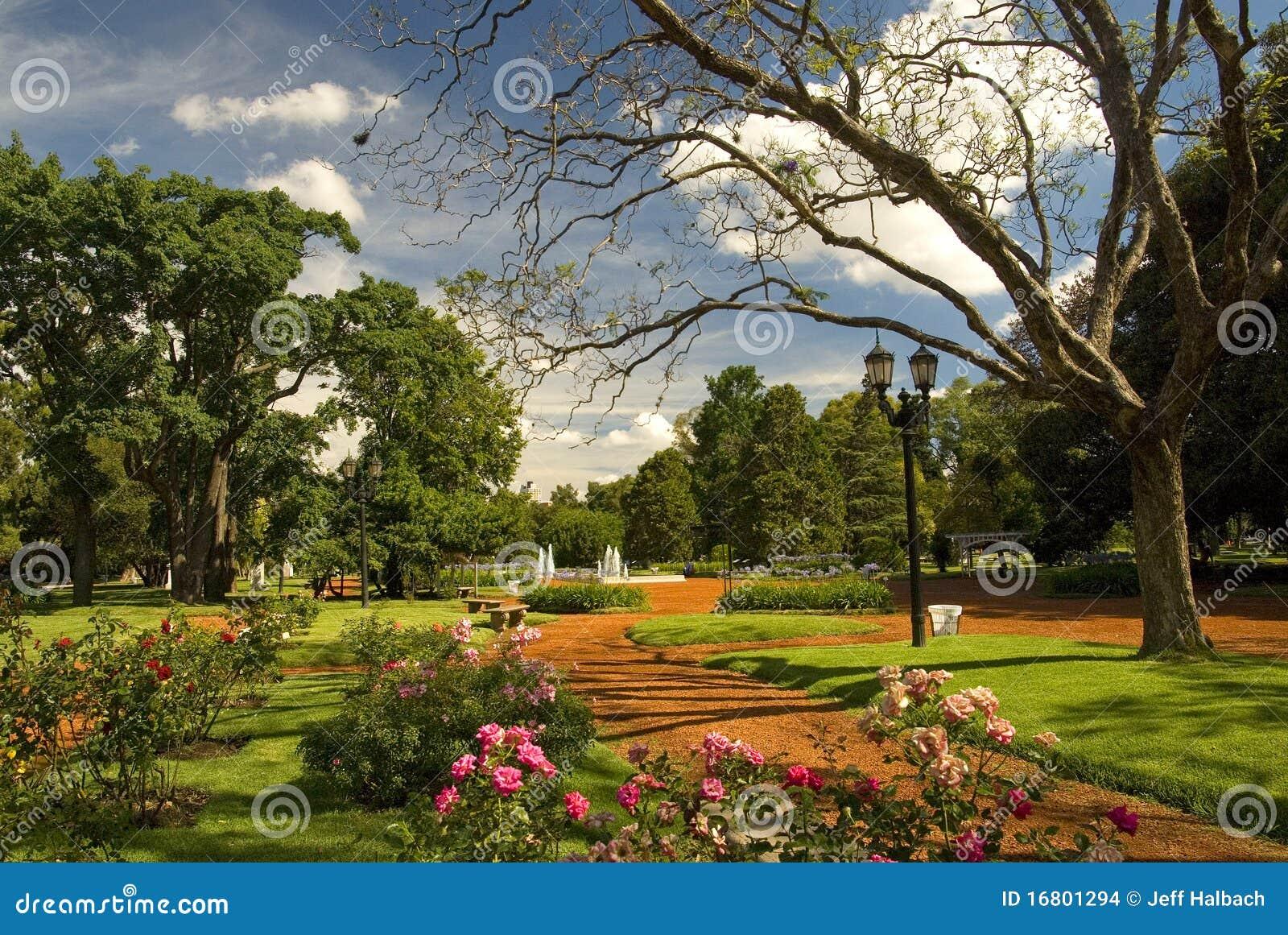imagens jardim de rosas:Jardim De Rosas Imagens de Stock – Imagem: 16801294
