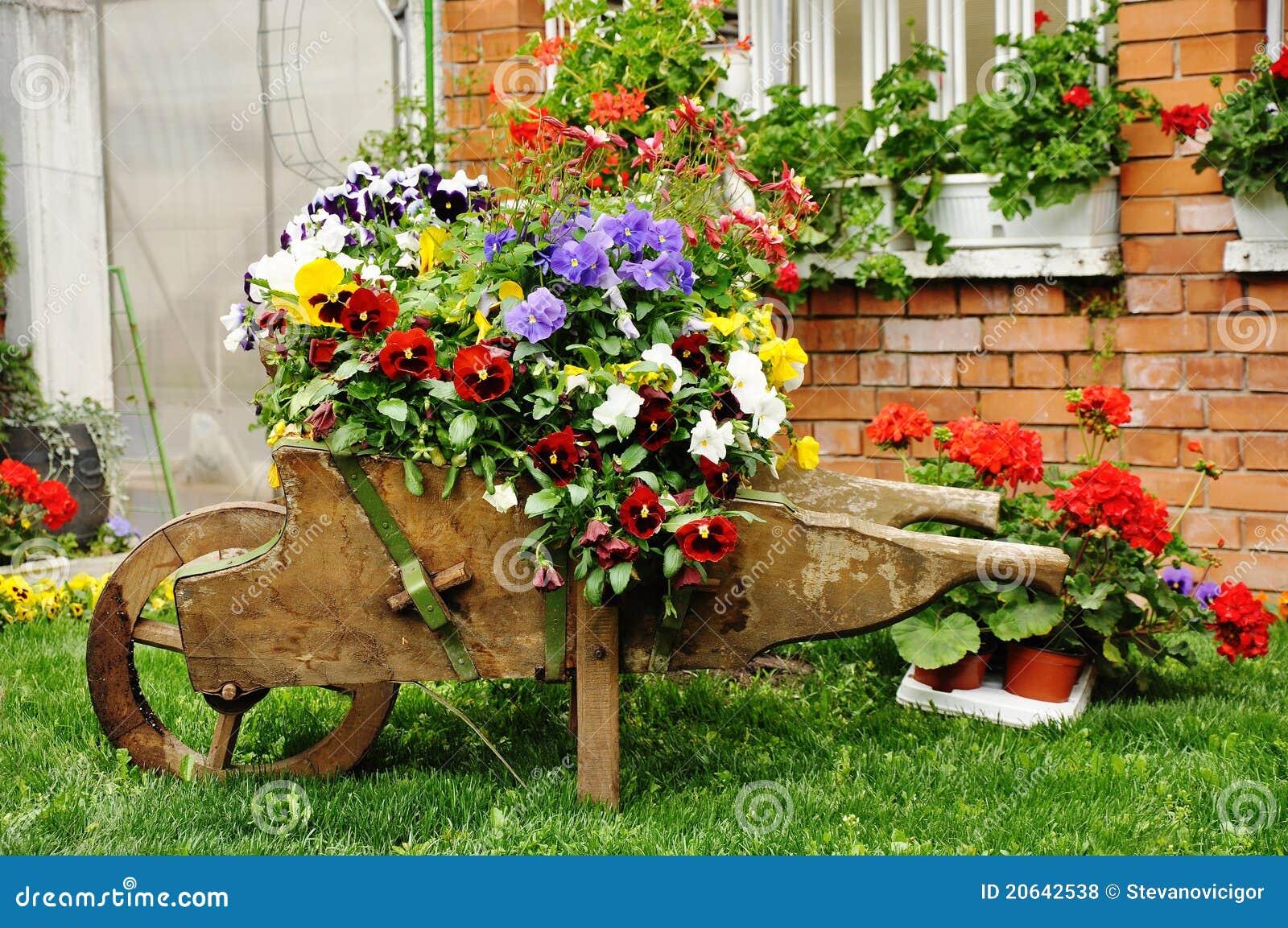 Jardim Do Quintal Fotos de Stock Royalty Free - Imagem ...