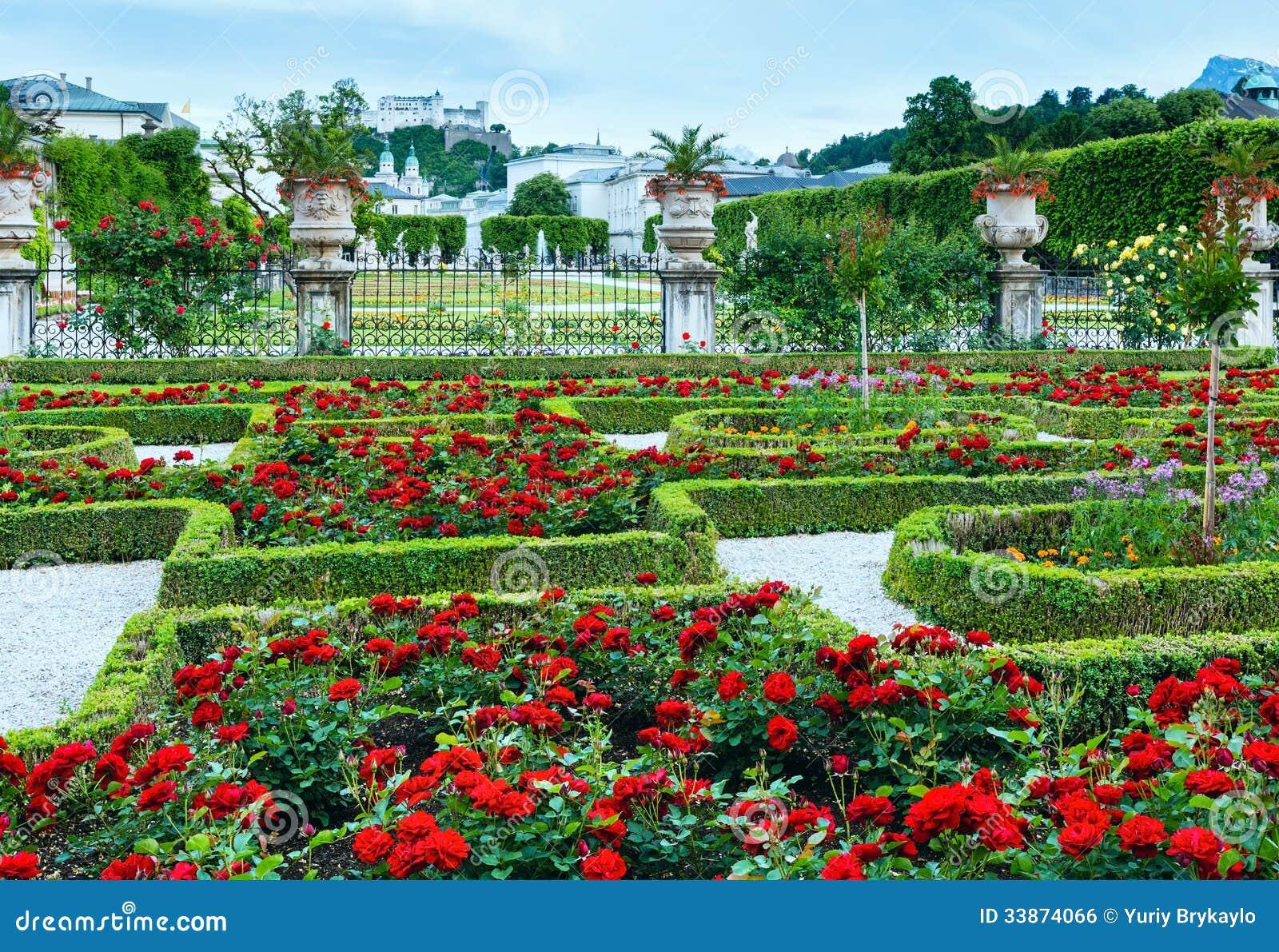 de flores da rosa do vermelho e a fortaleza de Hohensalzburg atrás de