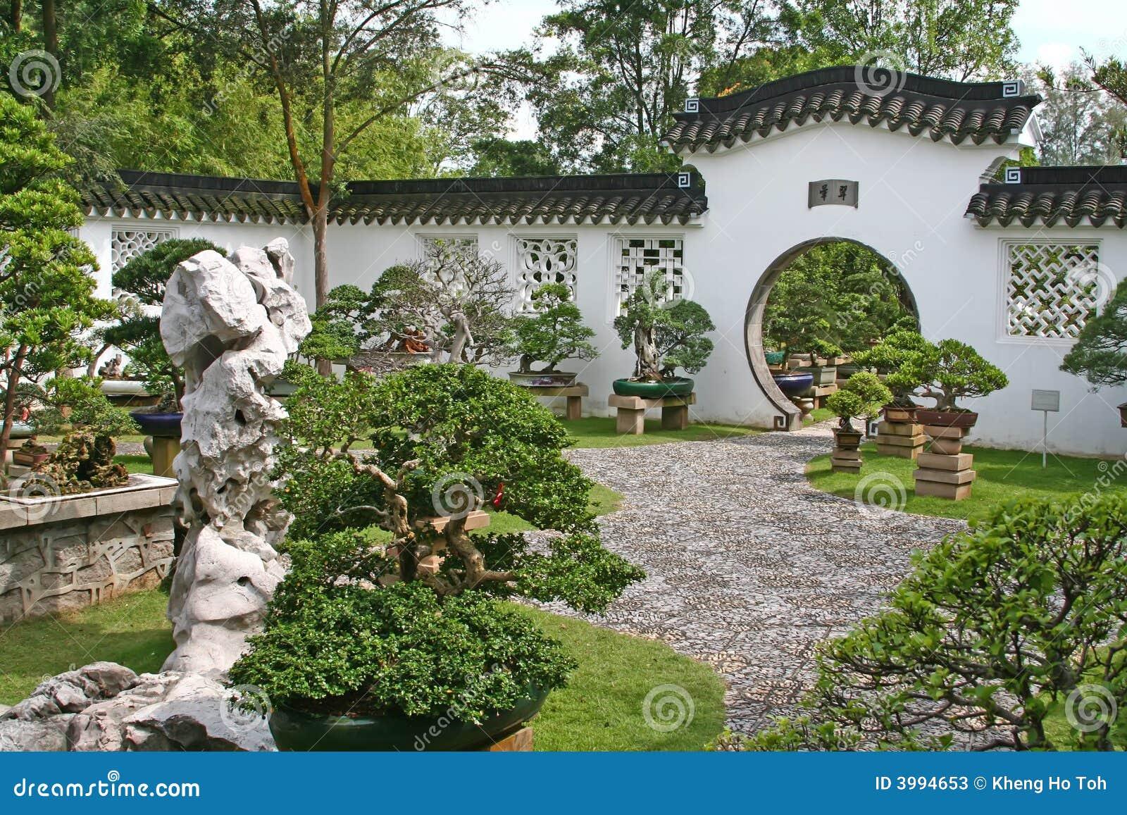 Jardim dos bonsais fotos de stock imagem 3994653 - Jardin de bonsais ...