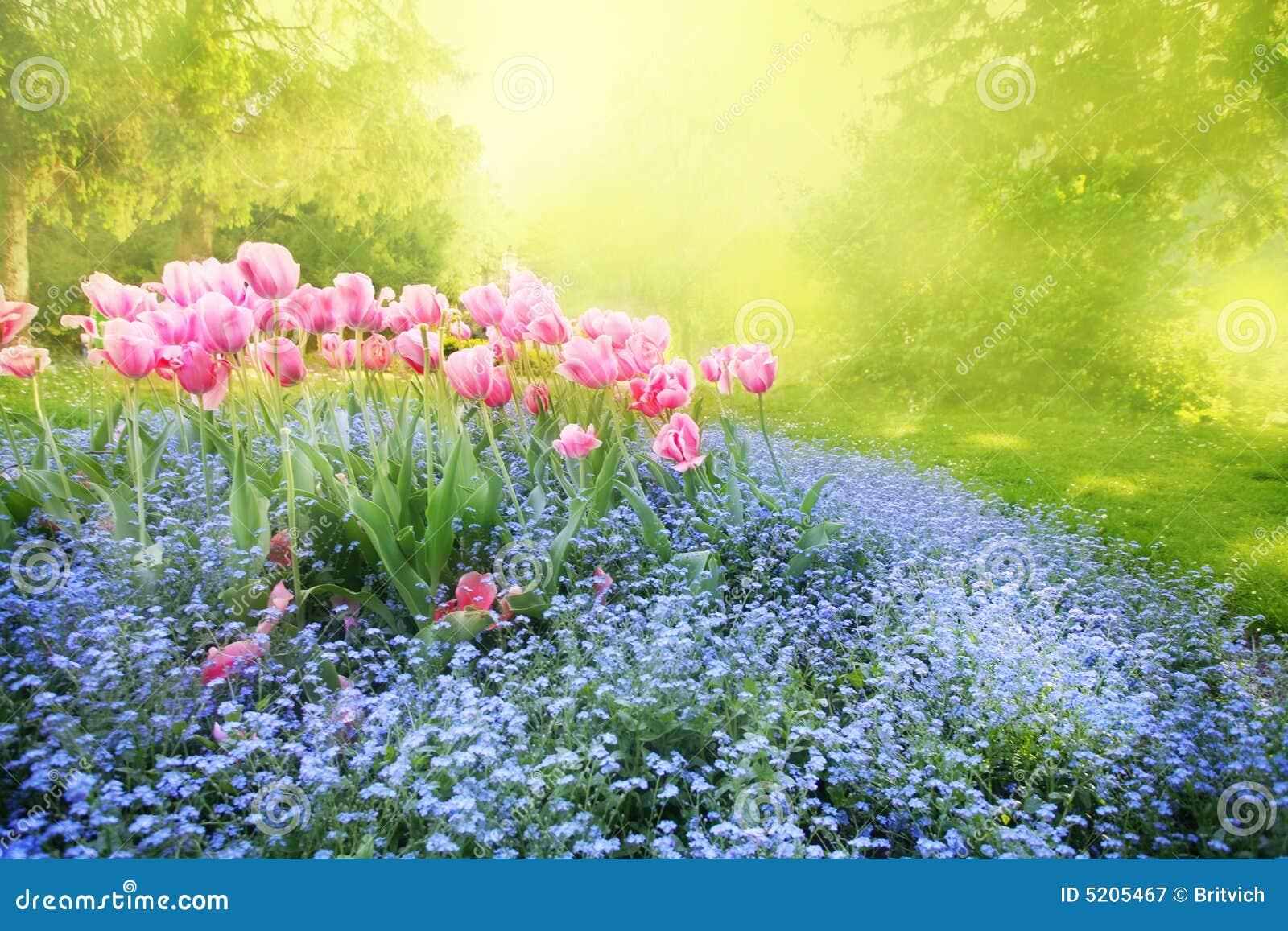 Jardim ensolarado misterioso