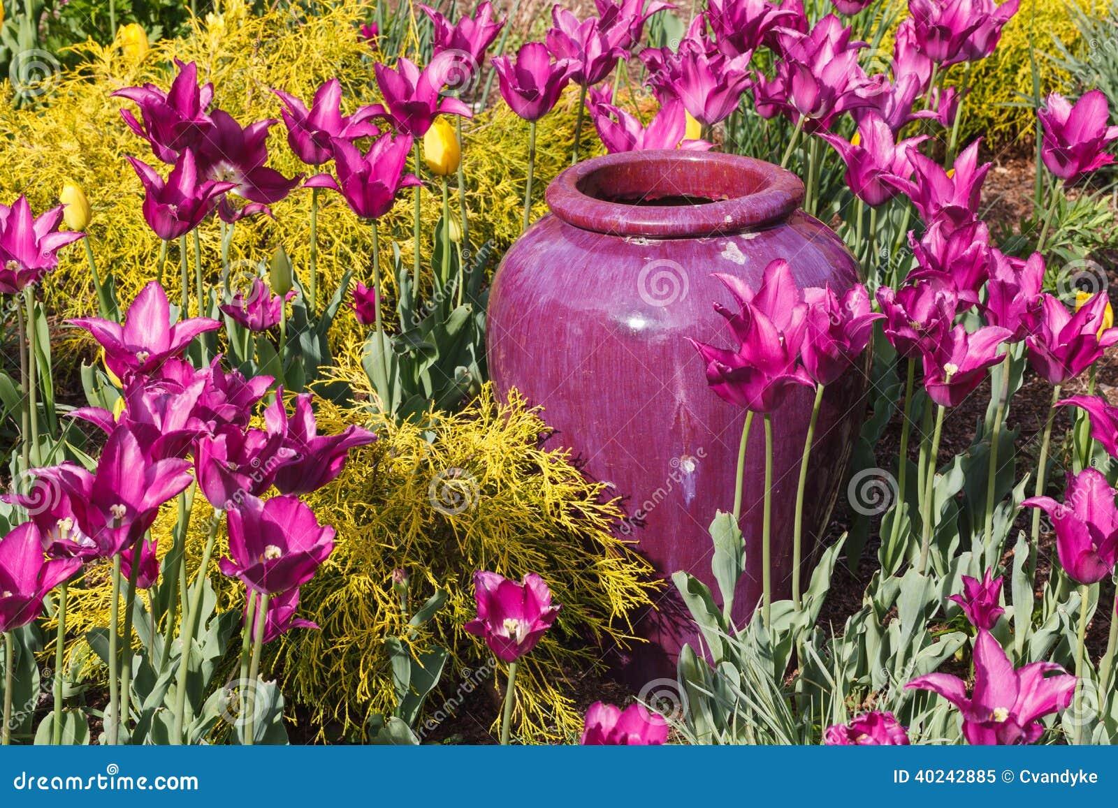 Jardim Exterior Do Vaso Roxo Foto de Stock - Imagem: 40242885