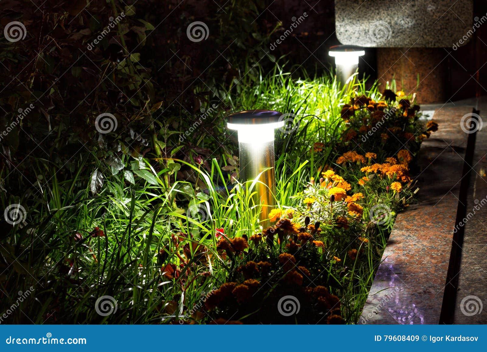 Jardim iluminado pela iluminação do diodo emissor de luz