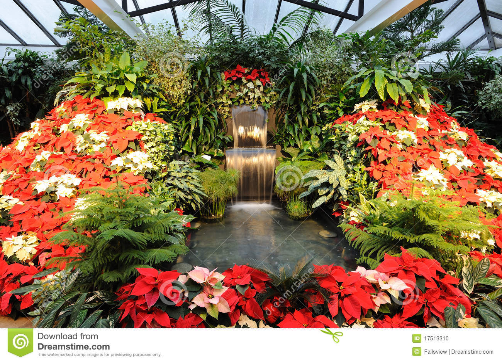 fotos de jardim interno : fotos de jardim interno:Jardim interno