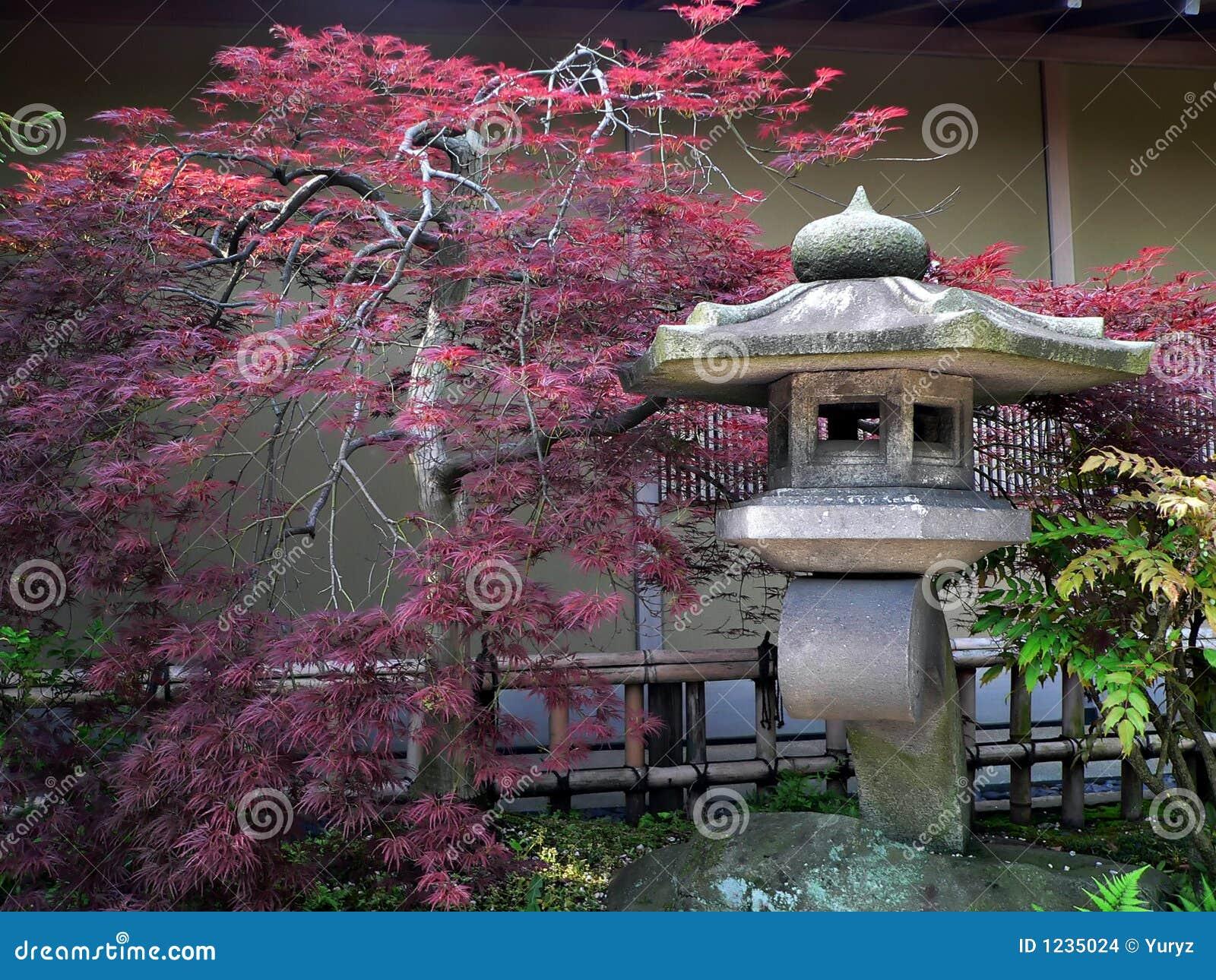 imagens jardim japones: japonesa e do vermelho-bordo no jardim de pedra quieto, Tokyo Japão