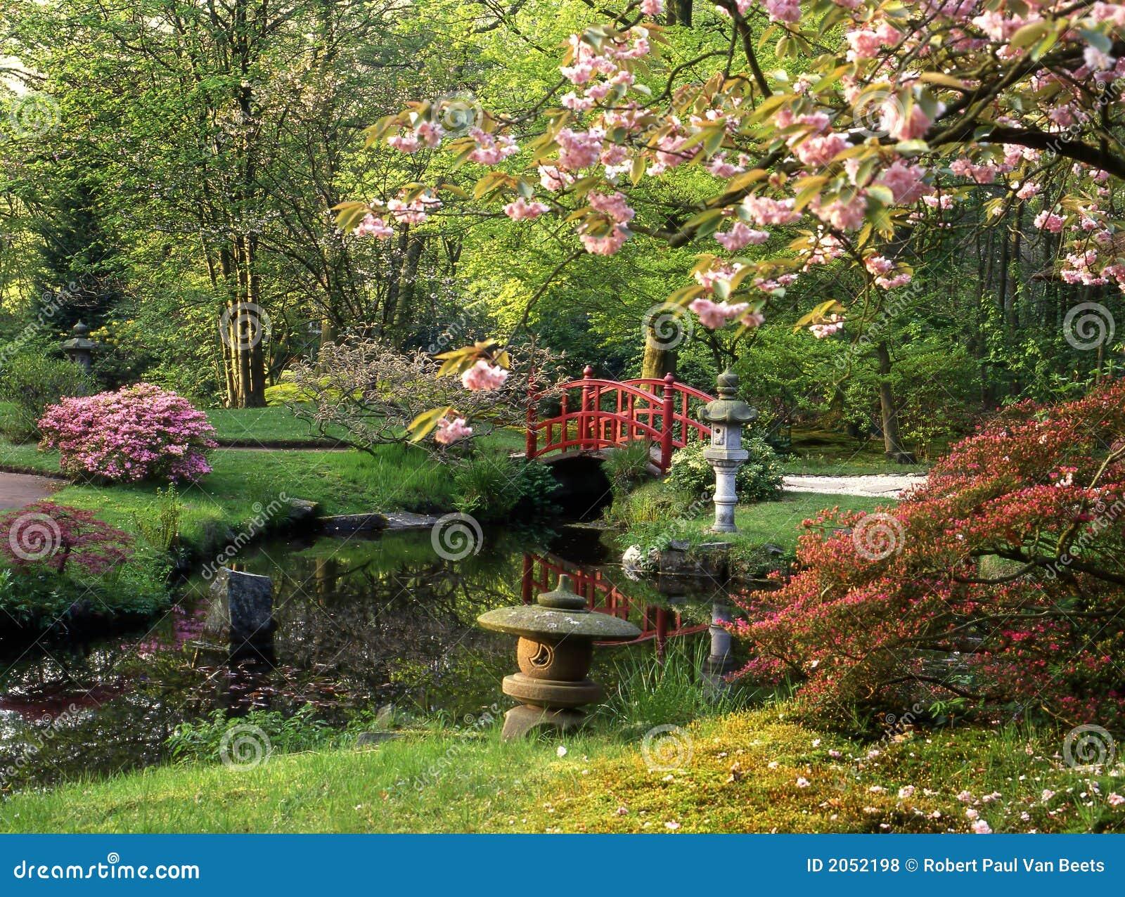 plantas jardim japones:Jardim japonês com ponte e água vermelhas. Florescência das flores.