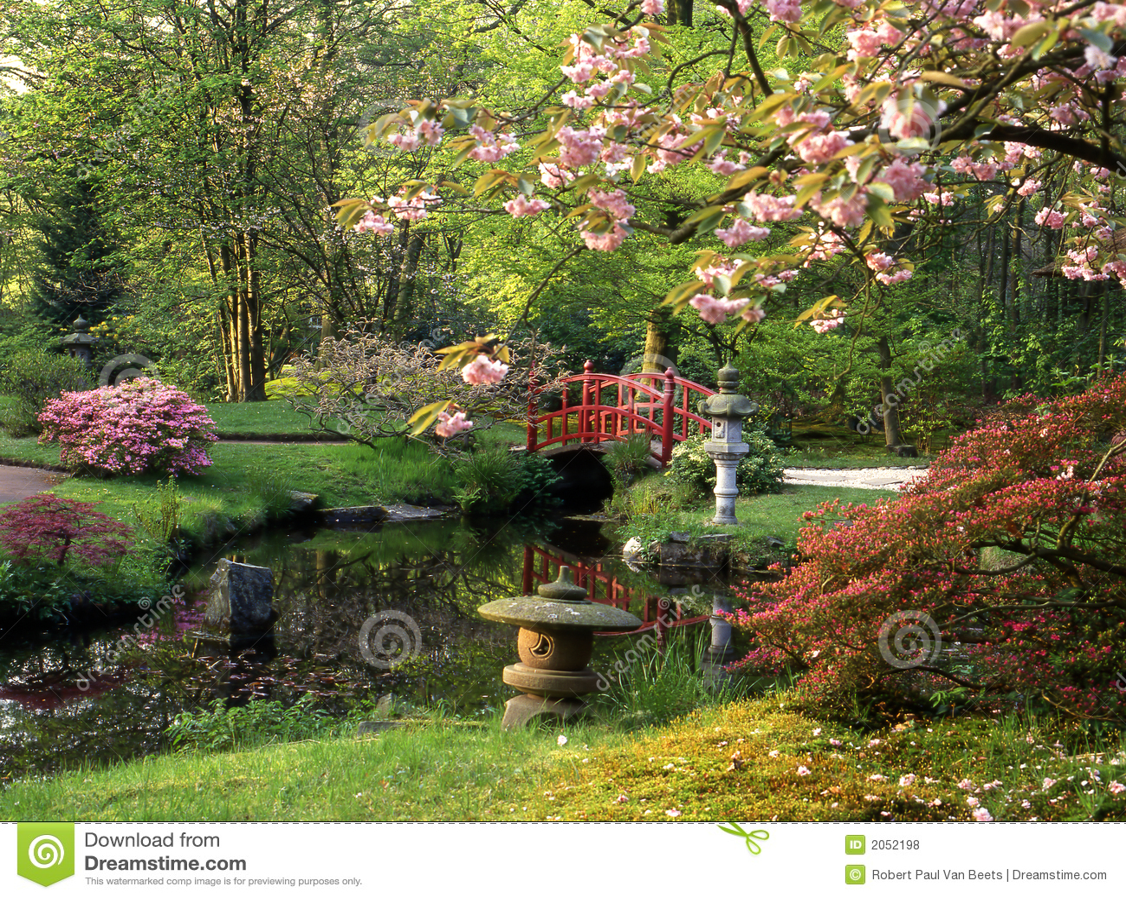 Jardim japon s foto de stock imagem de jardim flores 2052198 - Fotos jardines japoneses ...