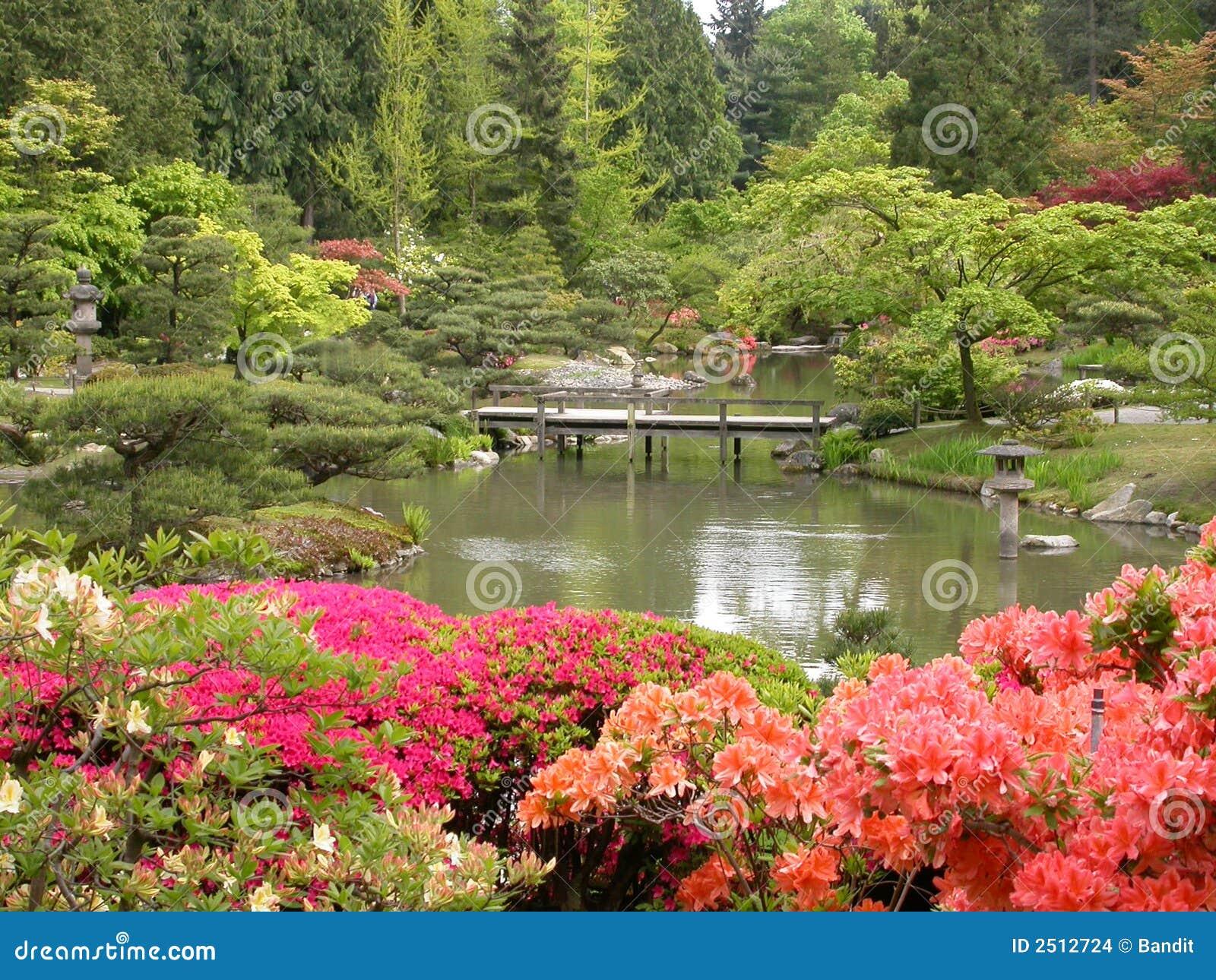 imagens jardim japones : imagens jardim japones:Jardim japonês com as flores bonitas no primeiro plano, a ponte e a