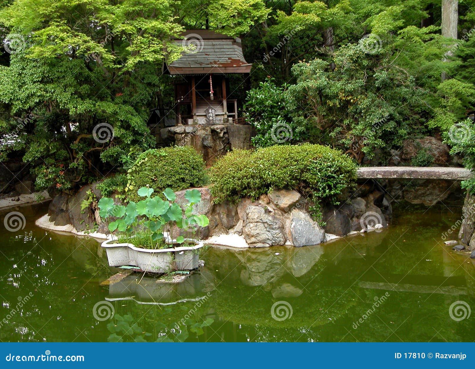 Jardim japonês verde