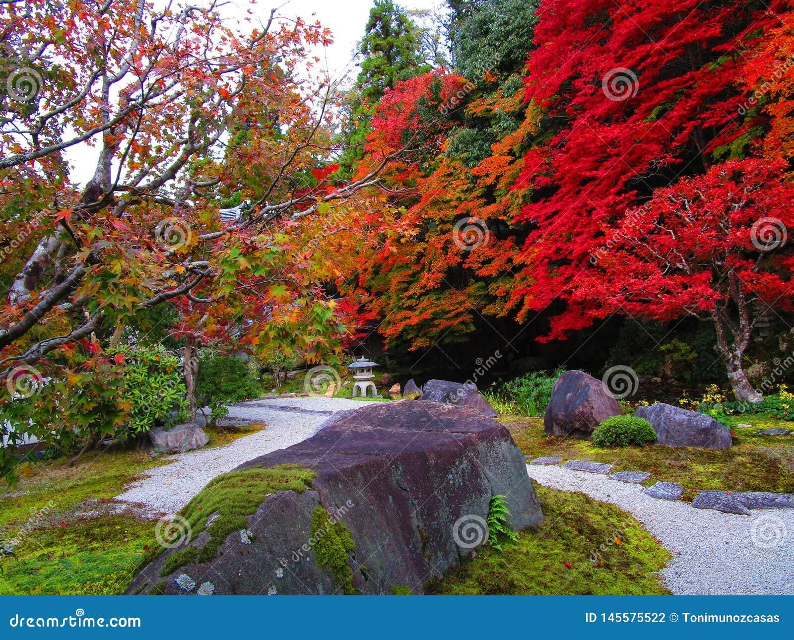Jardim japon?s