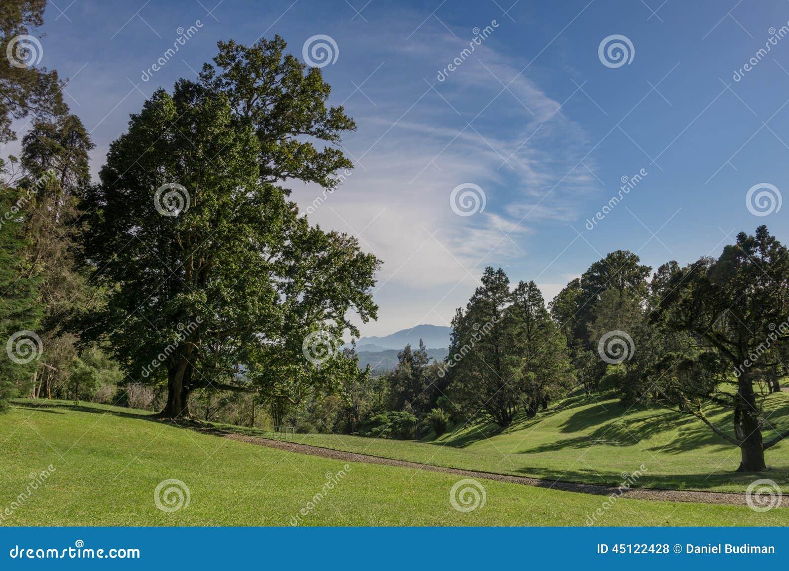 fotos de jardim grande:Foto de Stock: Jardim natural grande