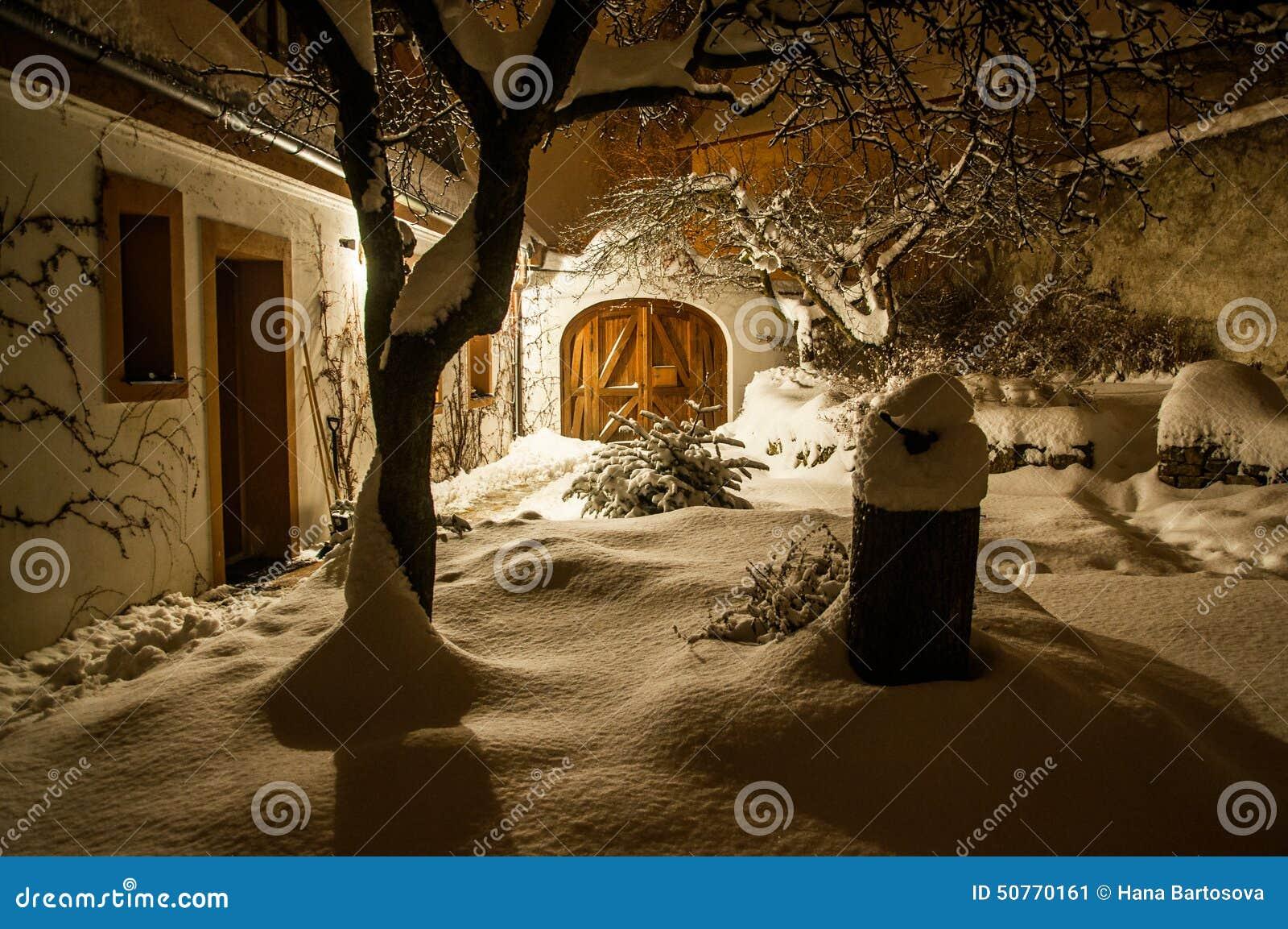 Jardim nevado do fairytail no inverno