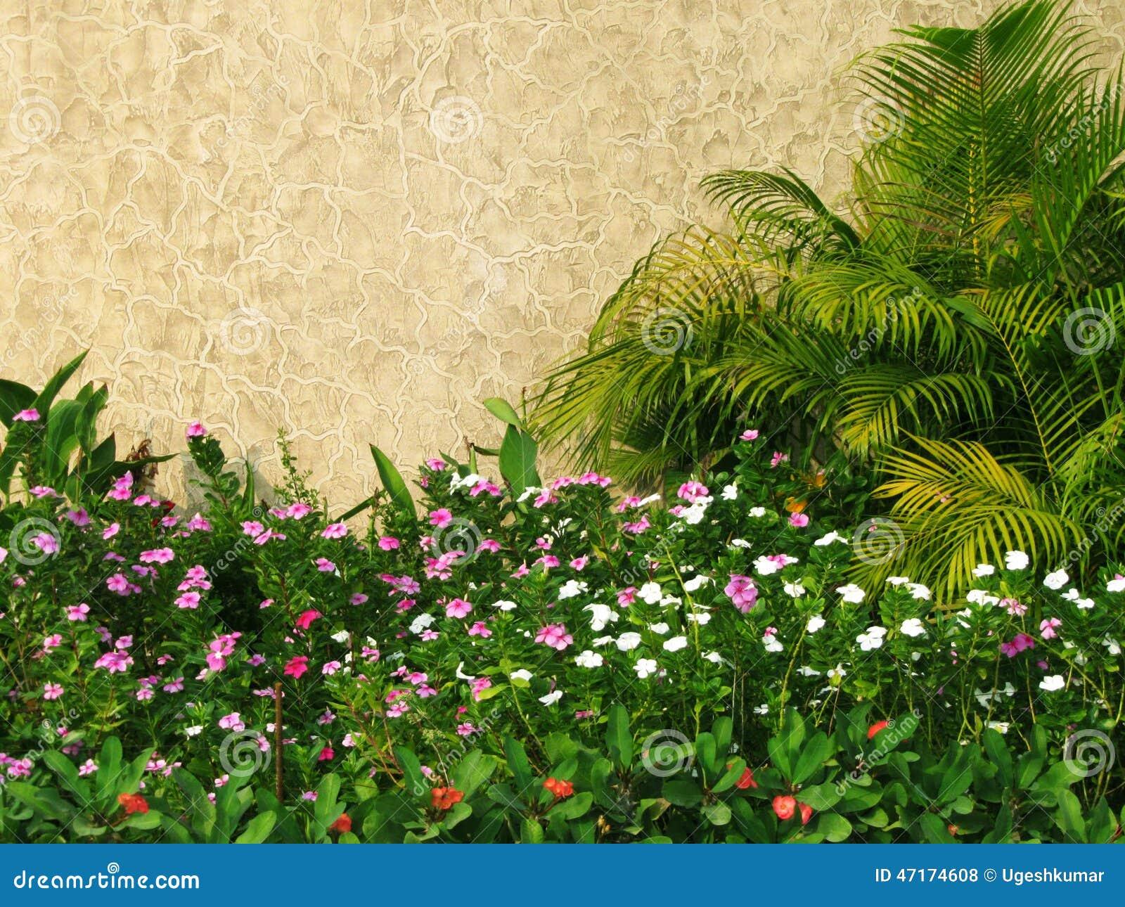 fotos jardim pequeno:Jardim pequeno bonito