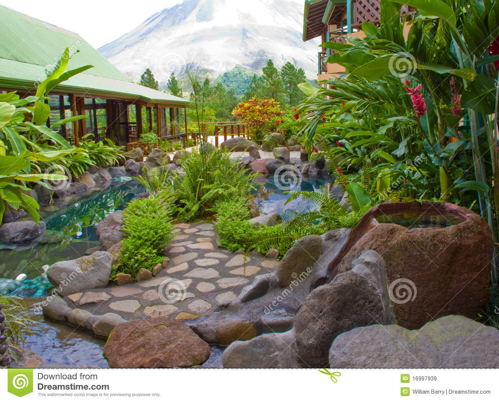 fotos de jardim tropical:Jardim tropical luxúria situado em Costa-Rica.