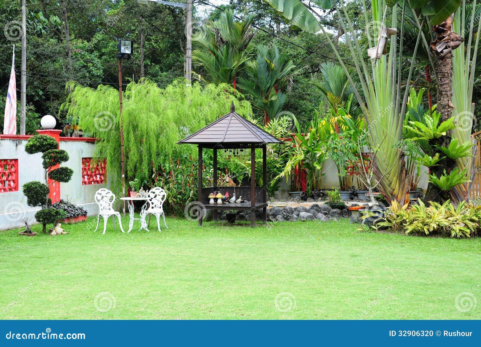 plantas jardim tropical:Jardim Tropical Foto de Stock – Imagem: 32906320