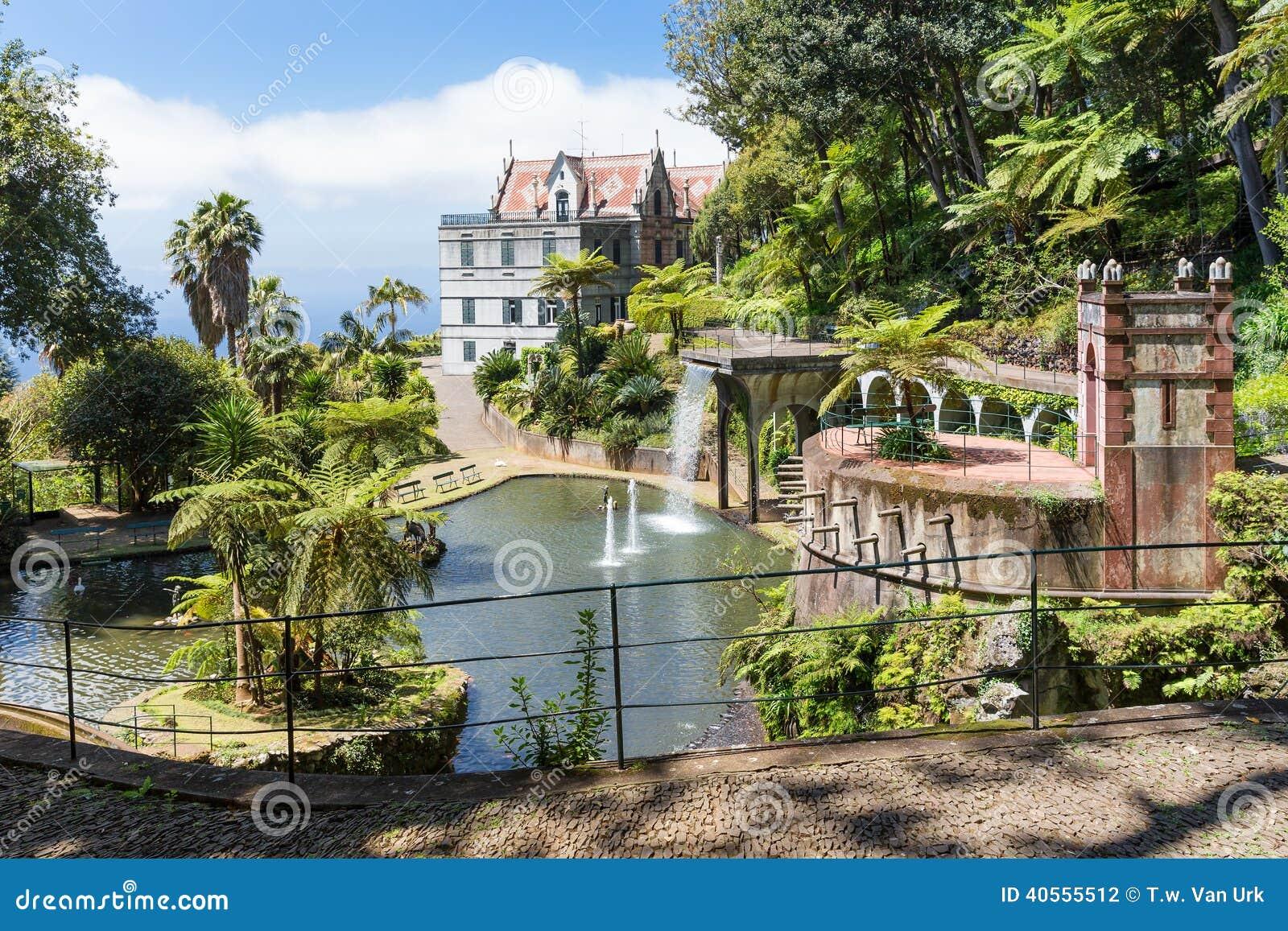 fotos de jardim tropical : fotos de jardim tropical:Foto de Stock: Jardim tropical com lagoa e palácio em Funchal, ilha