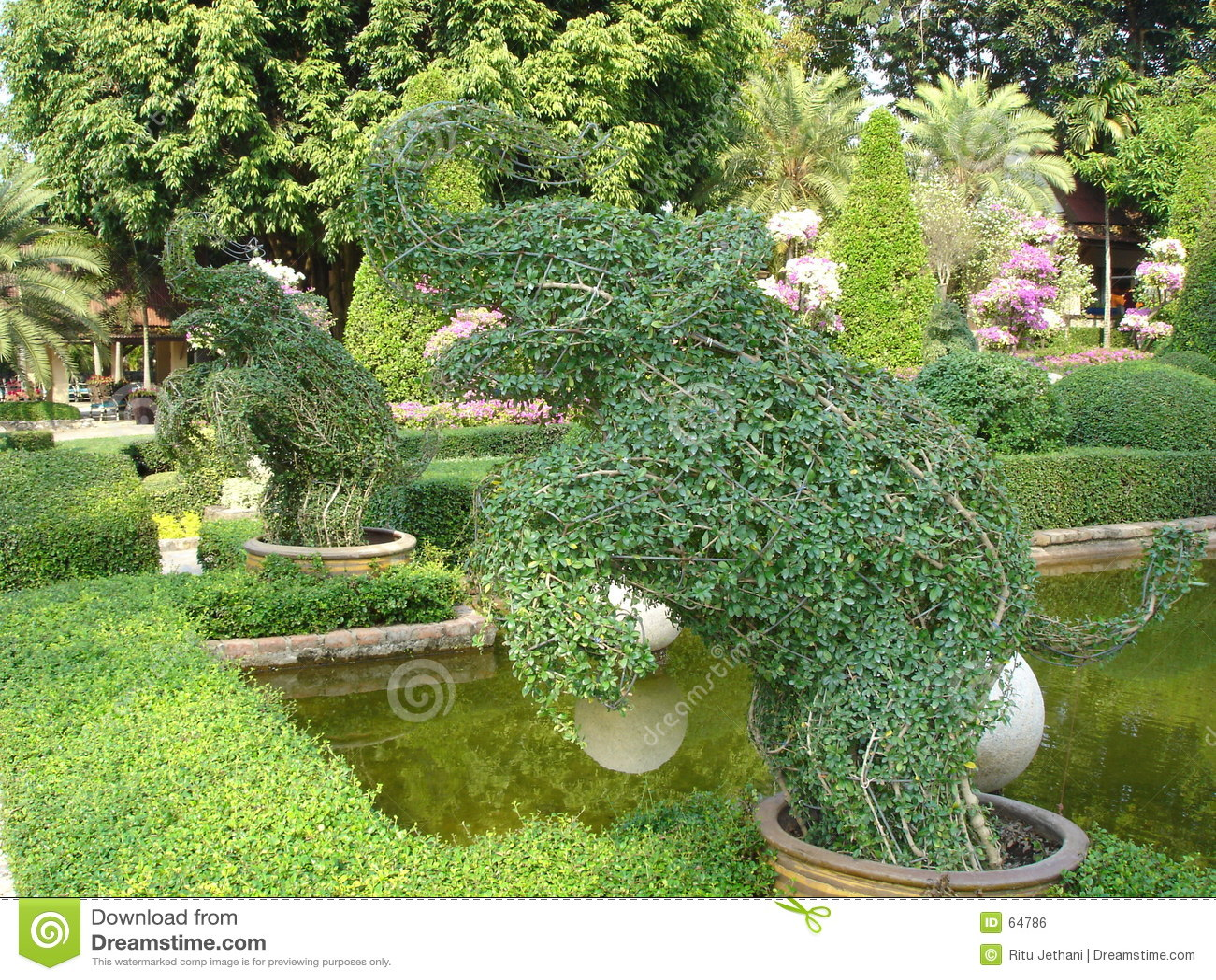 fotos de jardim tropical : fotos de jardim tropical:Jardim Tropical De Nong Nooch Imagem de Stock Royalty Free – Imagem
