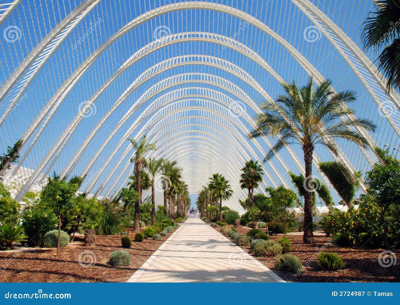 fotos de jardim tropical : fotos de jardim tropical:Beautiful Tropical Garden