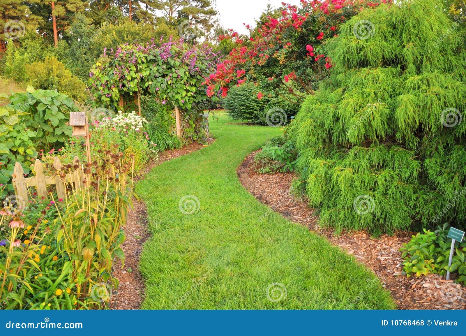Jardim Verde Fotos de Stock Royalty Free  Imagem 10768468