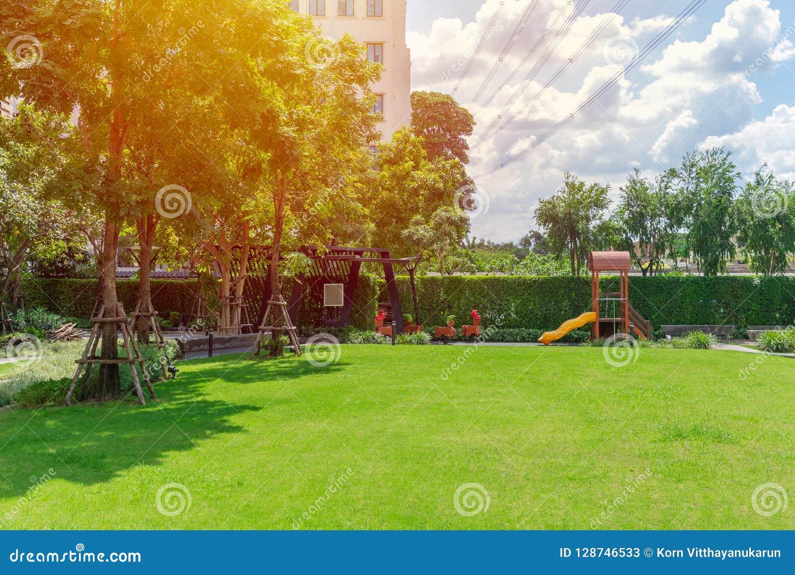 Jardim verde da natureza do campo de jogos do quintal do campo do gramado exterior
