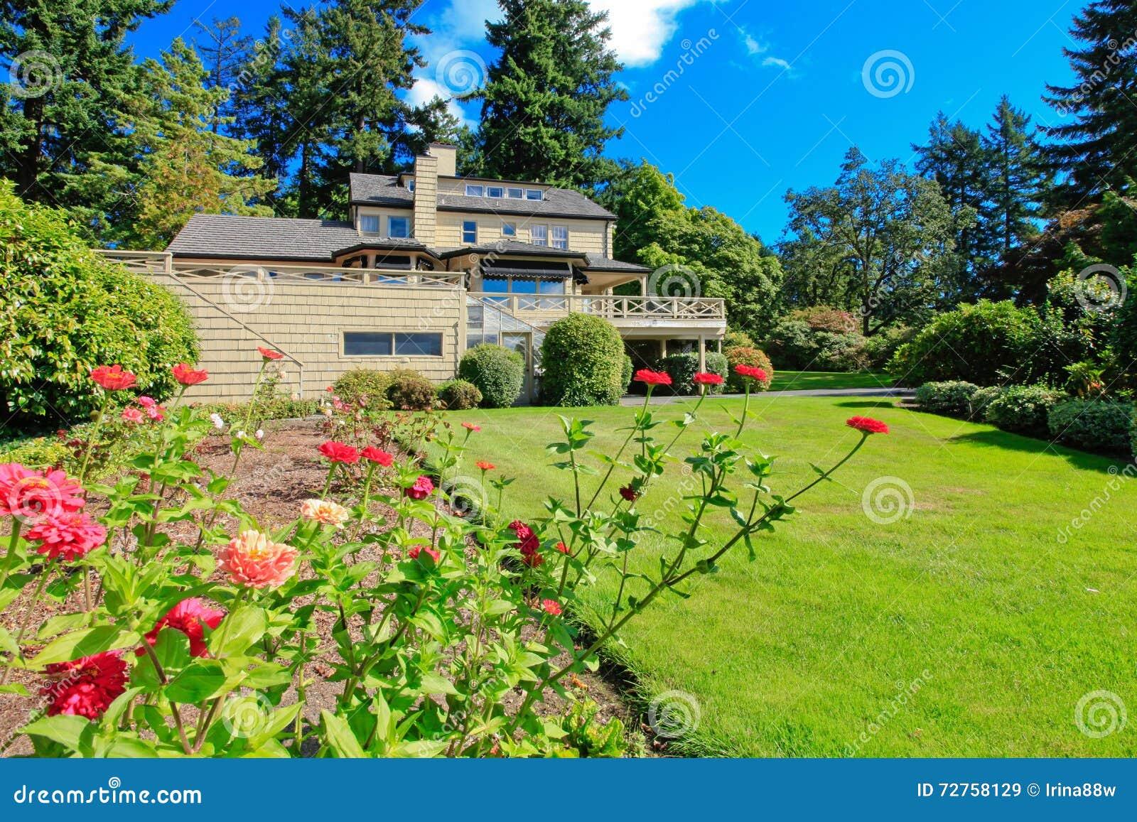 Jardim verde do pátio traseiro com flores agradáveis