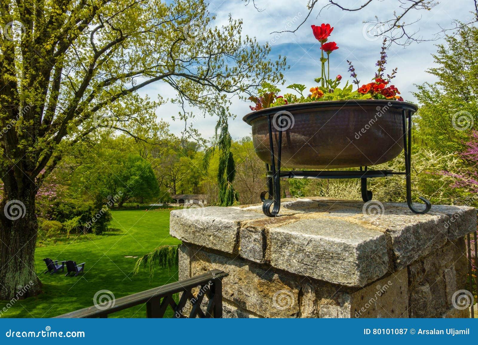 Jardim verde luxúria