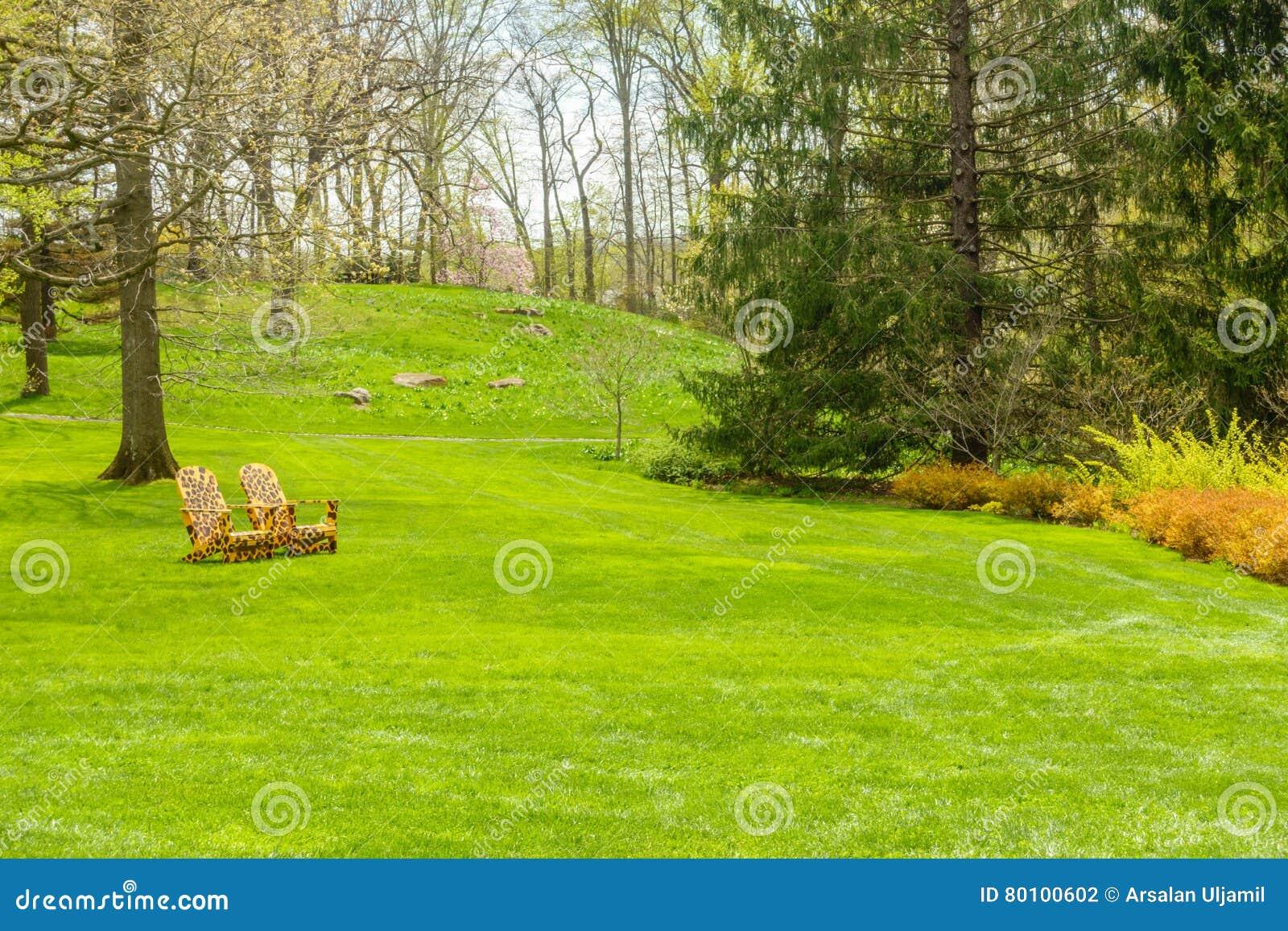 Jardim verde luxúria com cadeiras