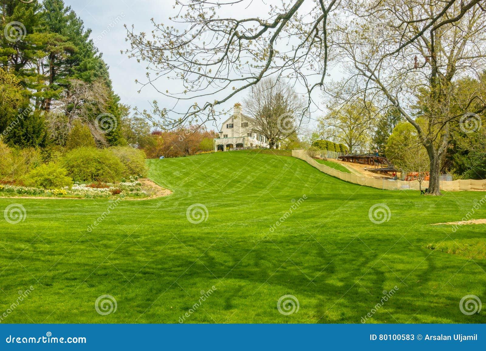 Jardim verde luxúria com a casa na cume