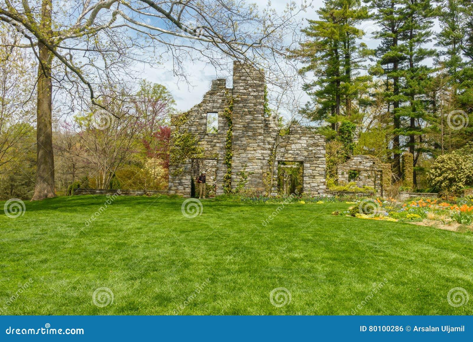 Jardim verde luxúria com estrutura de pedra
