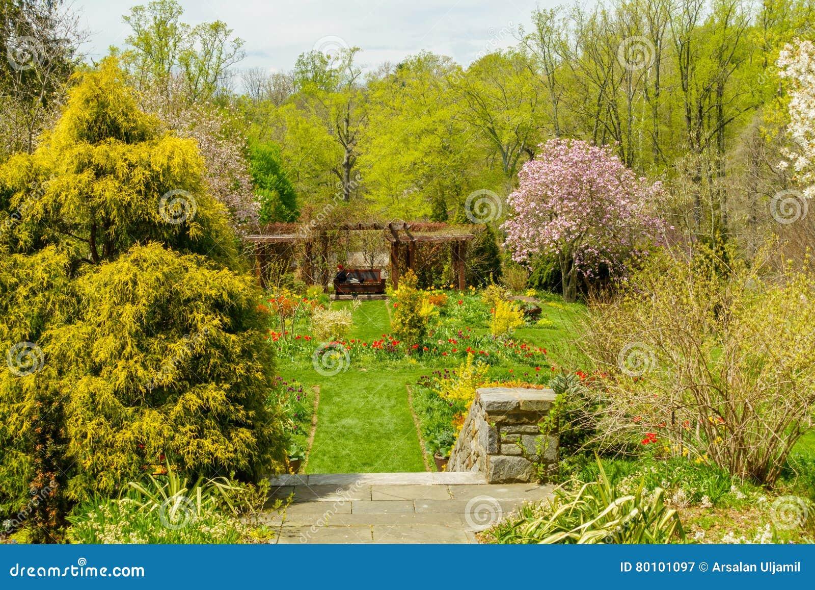 Jardim verde luxúria com lotes dos arbustos e das árvores