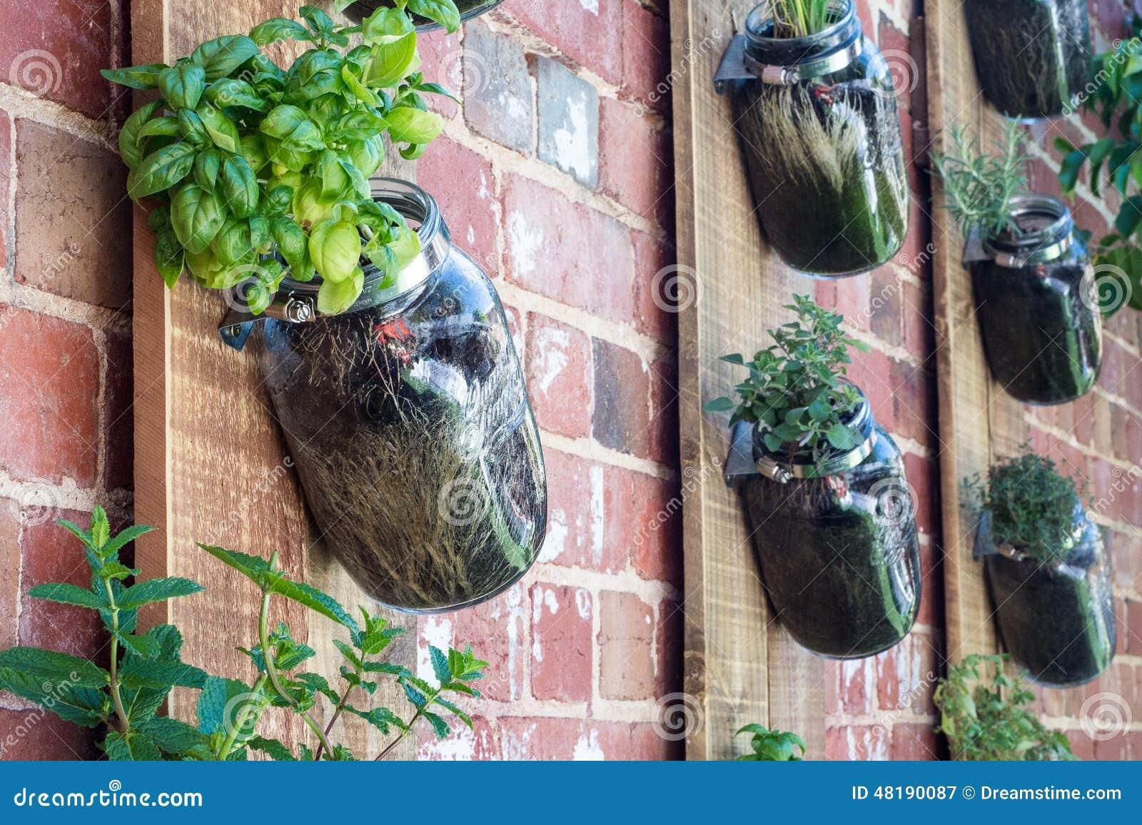 jardim vertical tijolo:Jardim vertical na parede de tijolo.