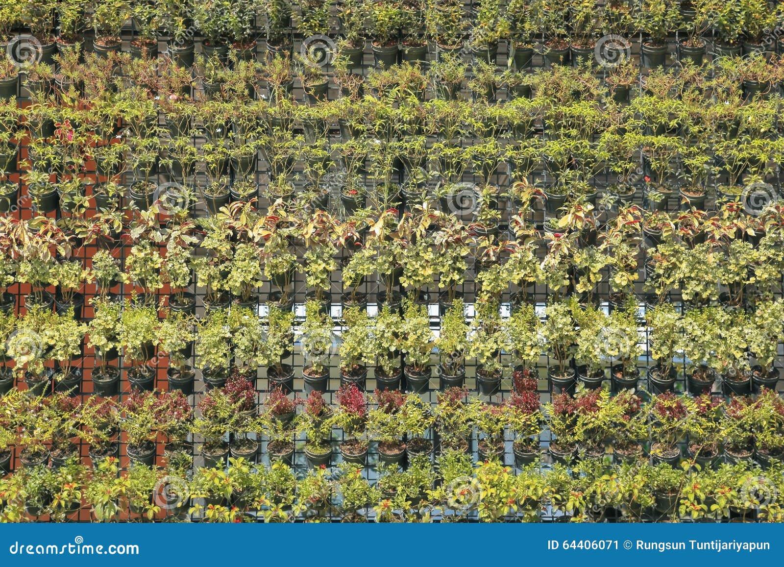 jardim vertical imagens:Vertical Garden