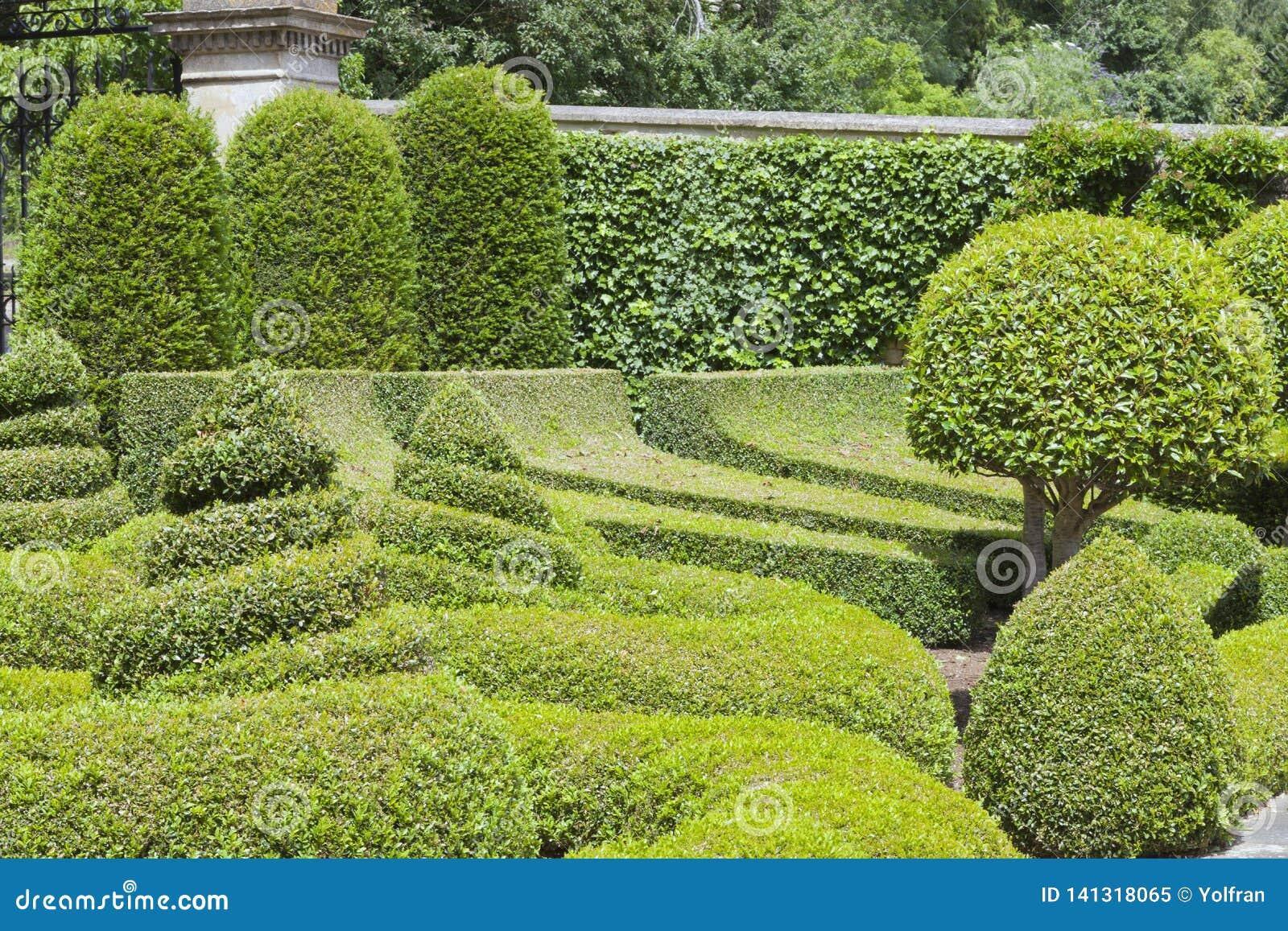 Jardin Aménagé En Parc Avec Les Arbres Topiaires Et Les ...