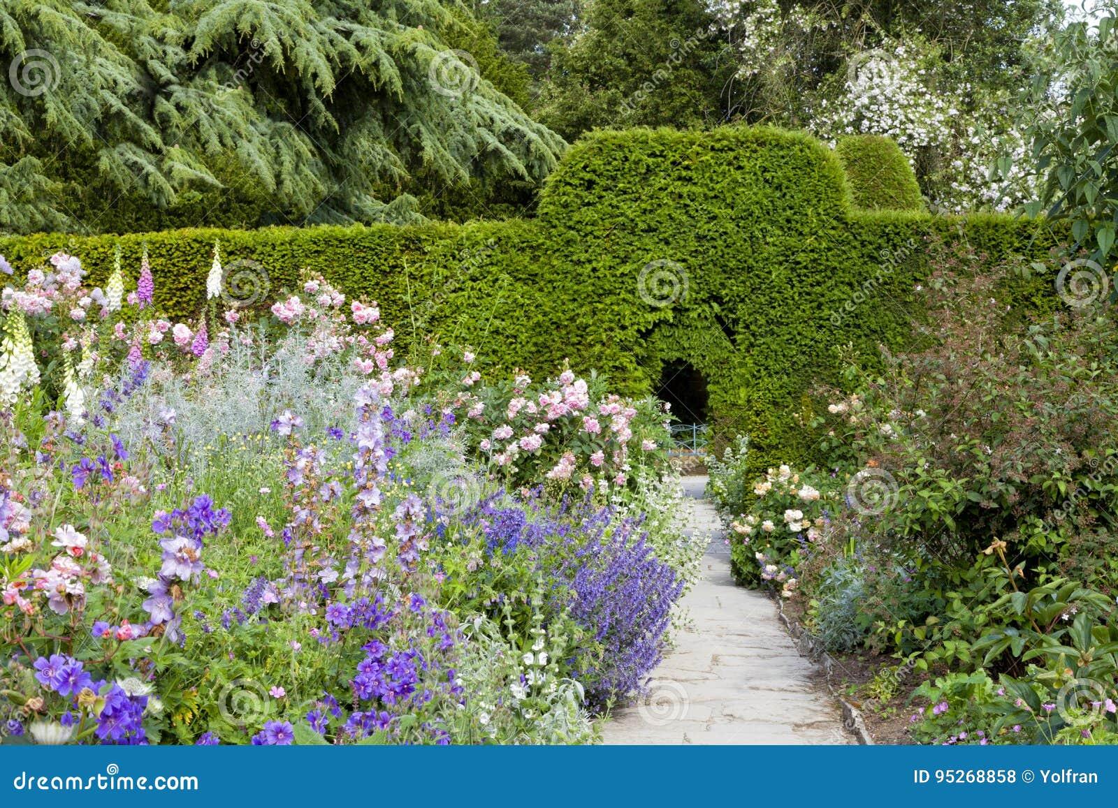 jardin anglais de cottage avec des fleurs en fleur haute. Black Bedroom Furniture Sets. Home Design Ideas