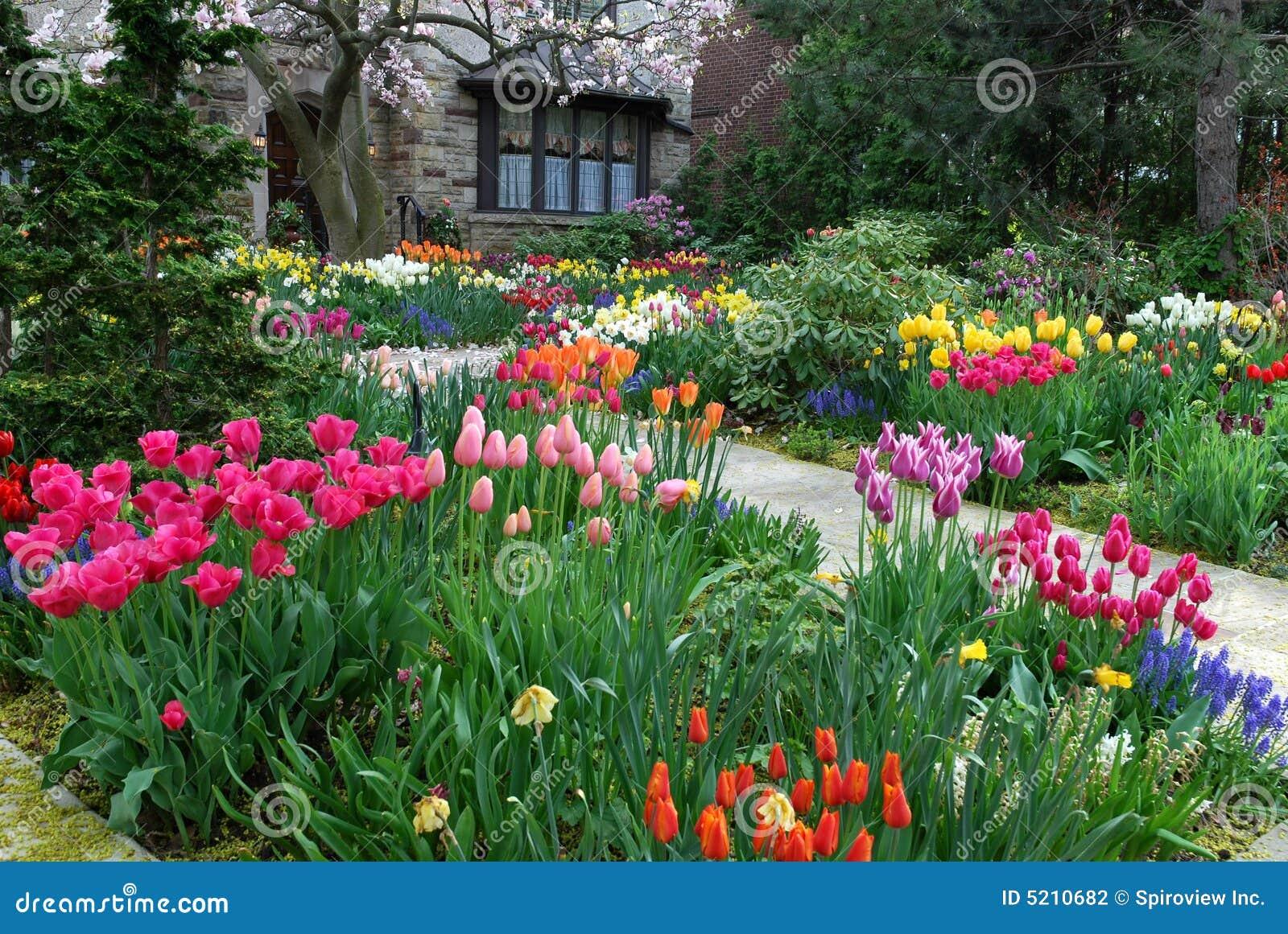 Jardin Avec Des Fleurs De Source Photographie stock ...