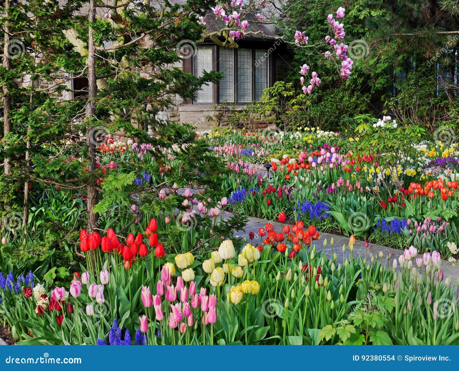 Jardin avec des fleurs de source