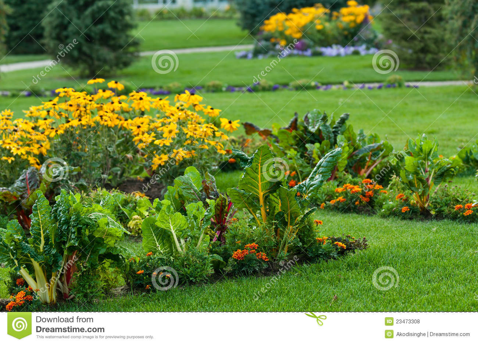 Jardin Avec Des L Gumes Et Des Fleurs Photos Libres De