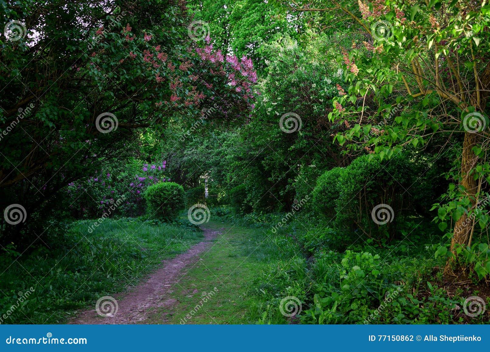 Jardin avec du charme de ressort