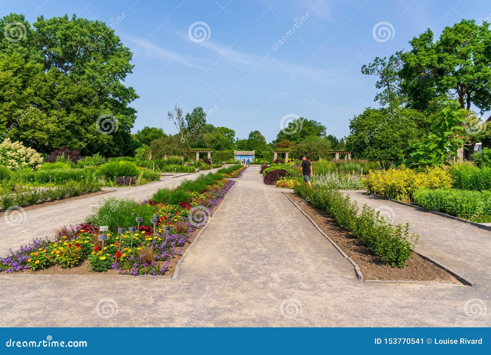 Jardin botanique de Montréal en juillet