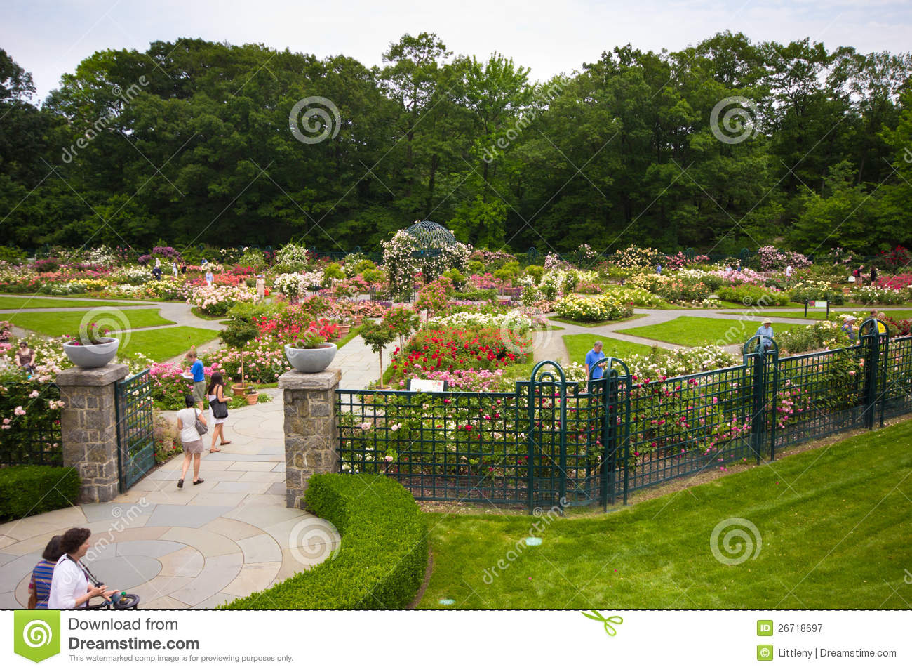 Jardin botanique nyc de new york photographie ditorial for Jardin new york