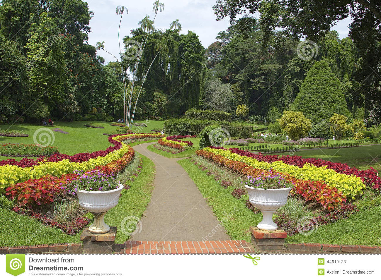 Jardin botanique royal peradeniya sri lanka photo stock for Jardin royal
