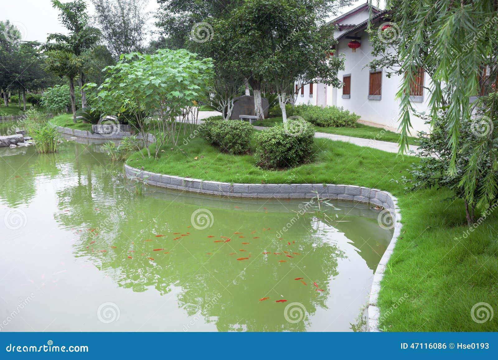 Jardin chinois avec l 39 tang poissons photo stock image for Etang jardin