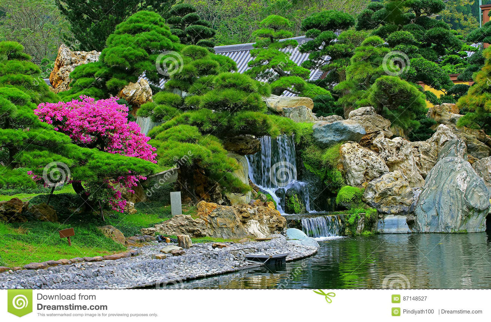 Jardin chinois de zen avec la chute de l 39 eau et les usines for Jardin chinois zen