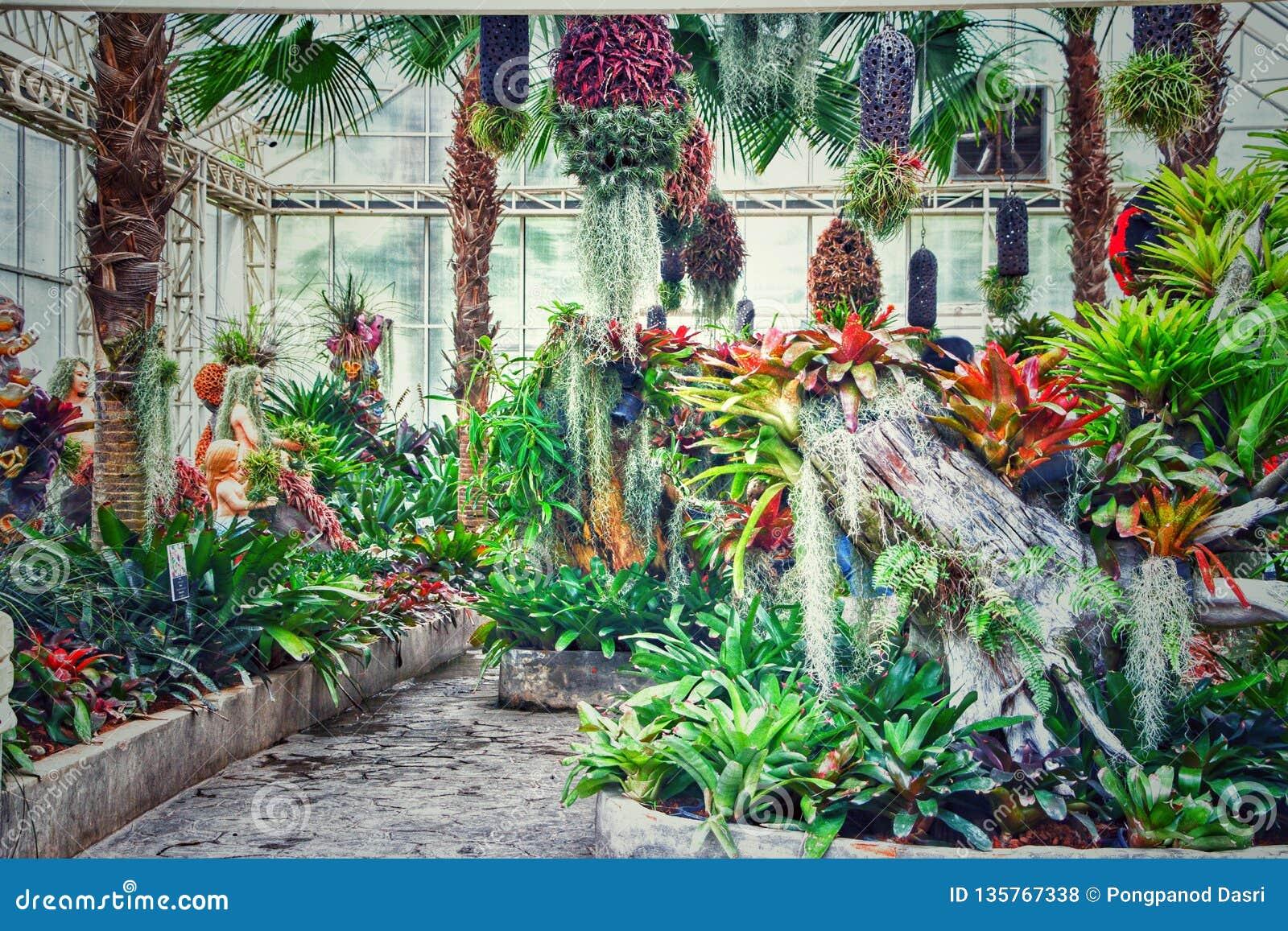 Jardin D Agrement En Thailande Dans Le Nord Est Photo Stock