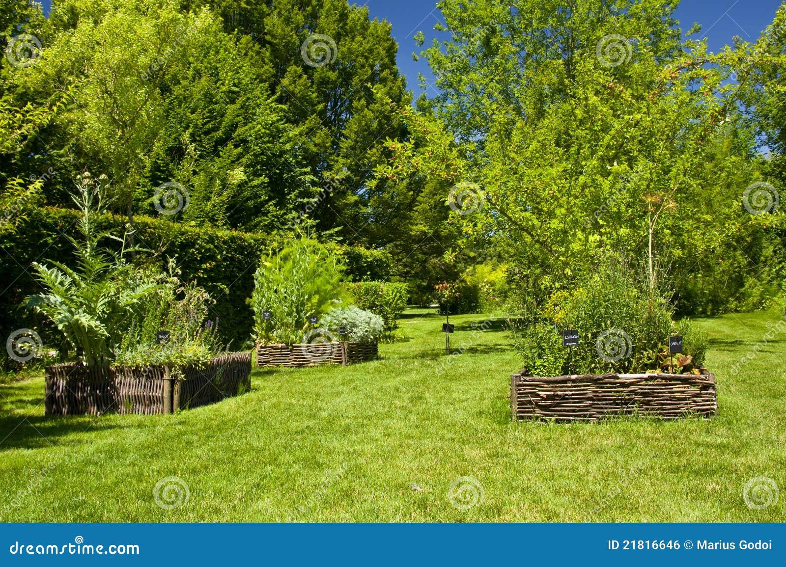 Jardin D 39 Herbes Image Libre De Droits Image 21816646