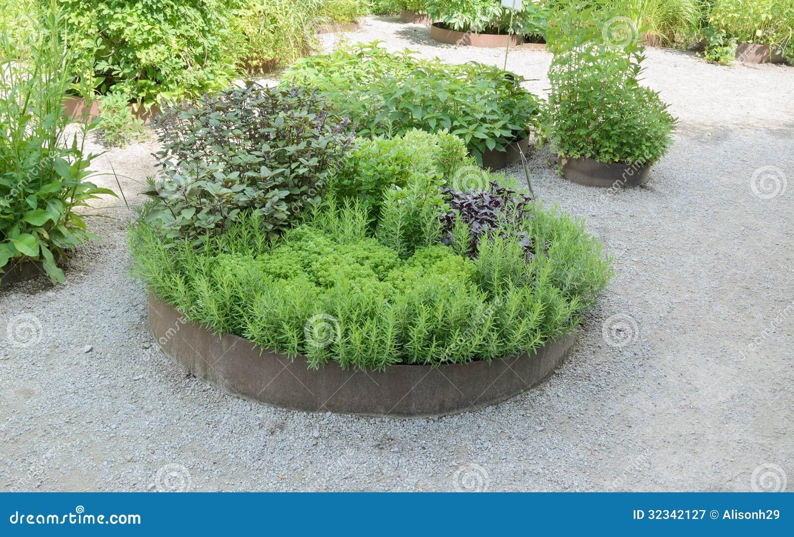 Jardin Dherbes Aromatiques Photographie stock libre de droits - Image ...