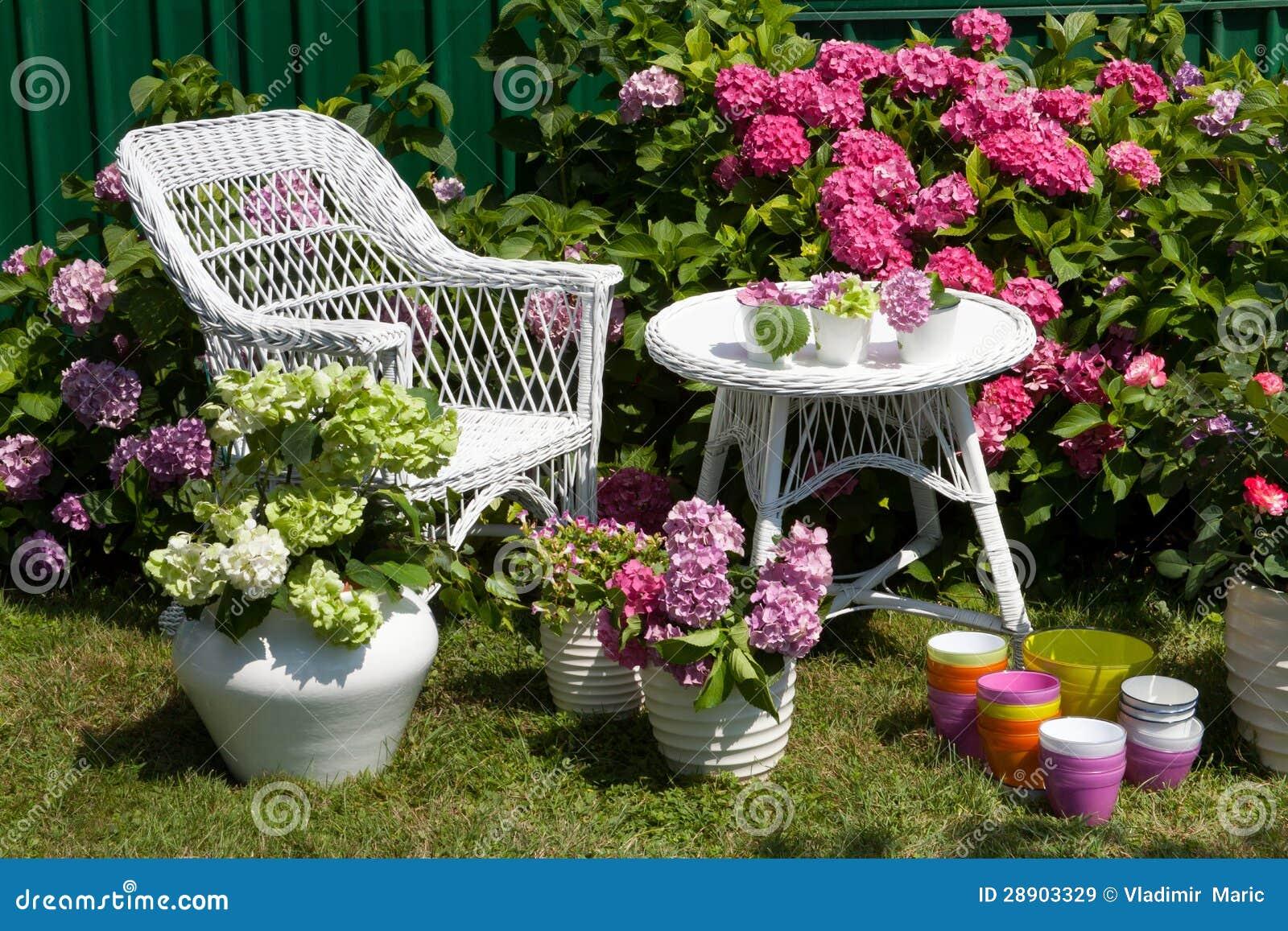 jardin d 39 hortensia images libres de droits image 28903329. Black Bedroom Furniture Sets. Home Design Ideas