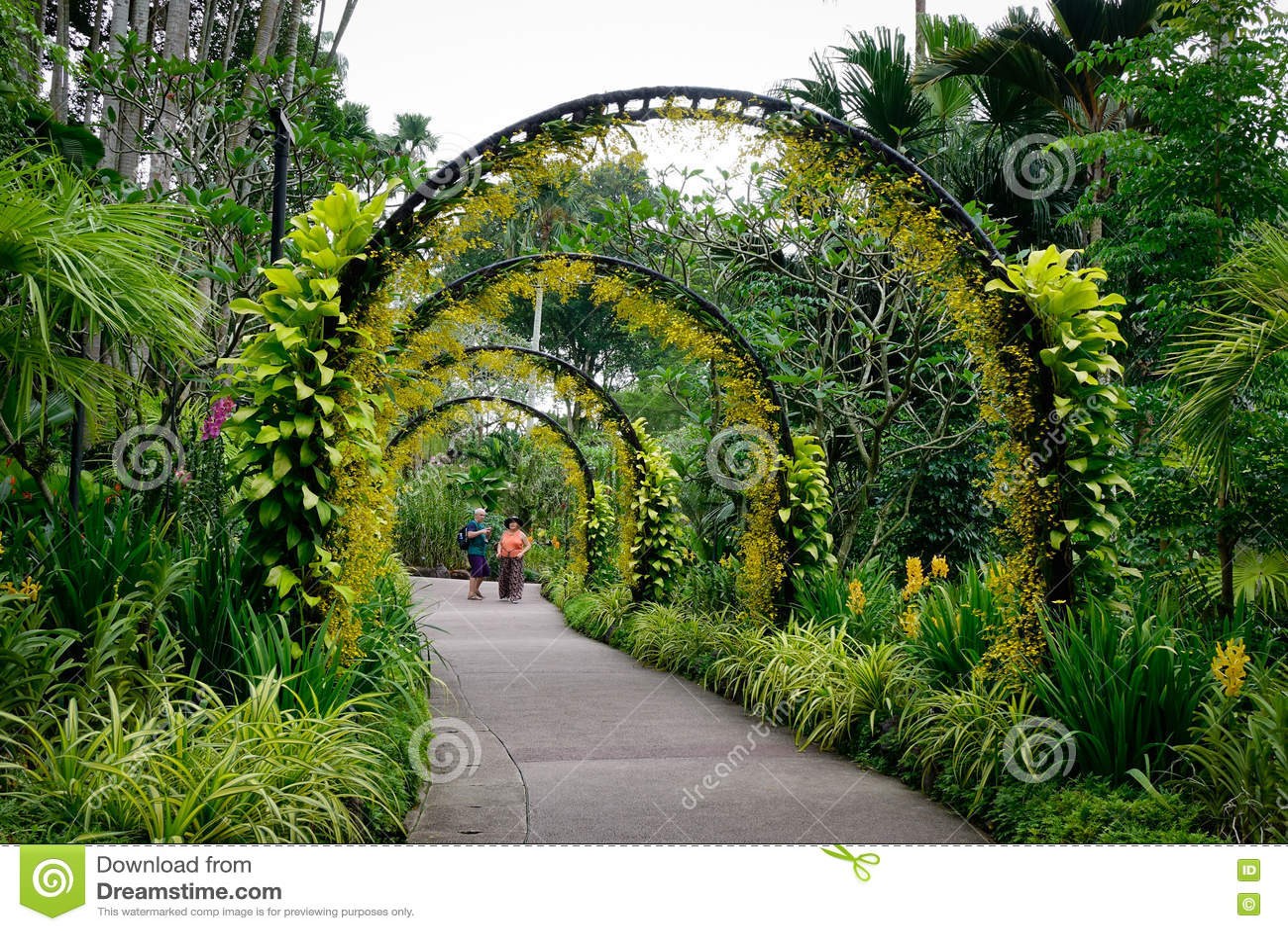 Jardin d 39 orchid e de visite de personnes au jardin for Jardin botanique singapour