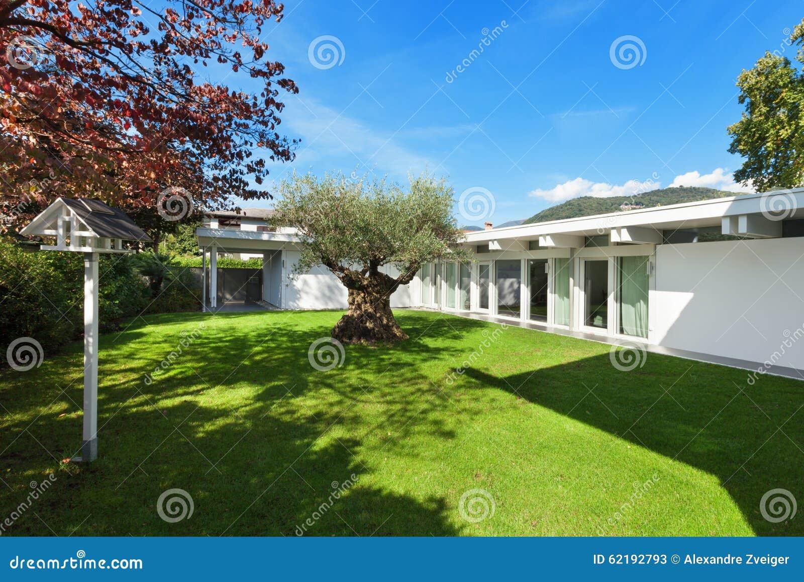 Jardin D 39 Une Maison Moderne Avec L 39 Olivier Photo Stock