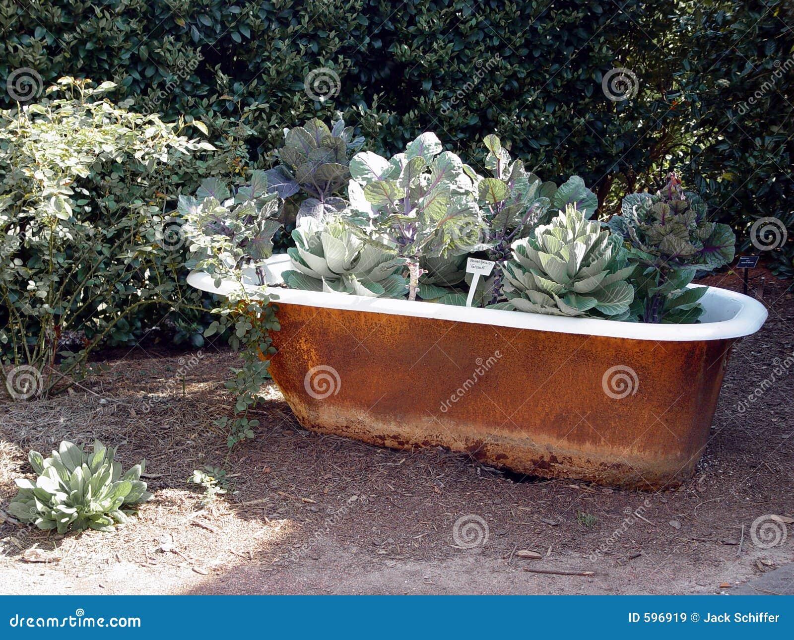 jardin de baignoire images libres de droits image 596919. Black Bedroom Furniture Sets. Home Design Ideas